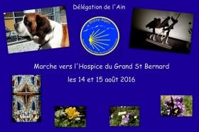 33-Grand St Bernard Août 2016-001